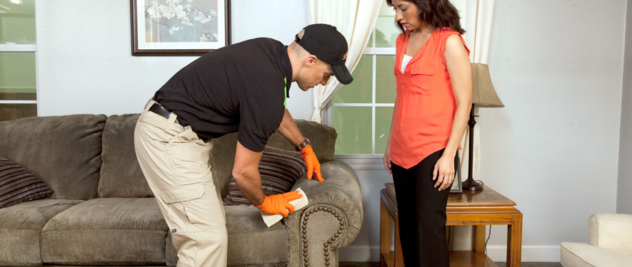 Amherst, NY carpet upholstery cleaning